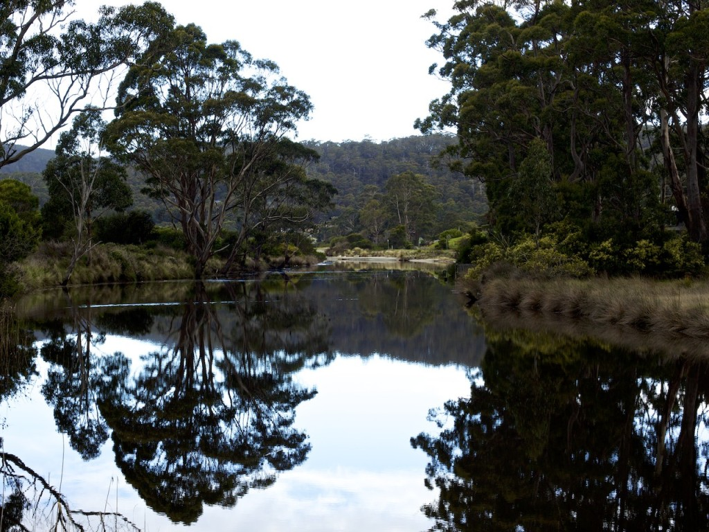 Captain Cook Creek