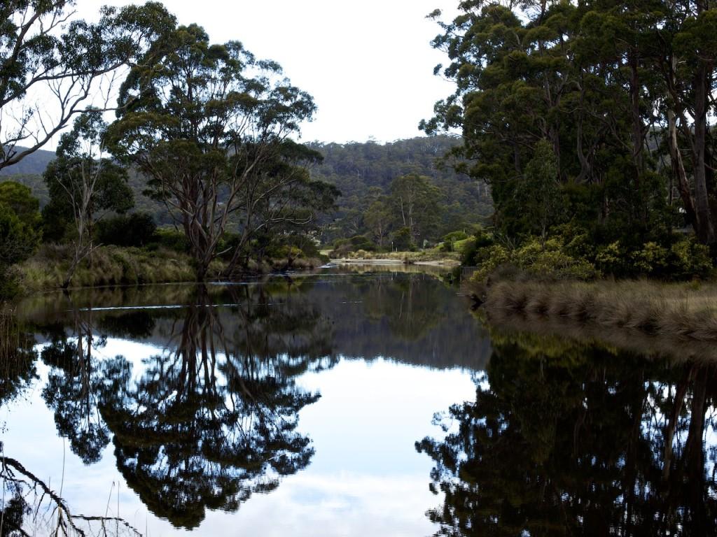 Captain Cook Creek