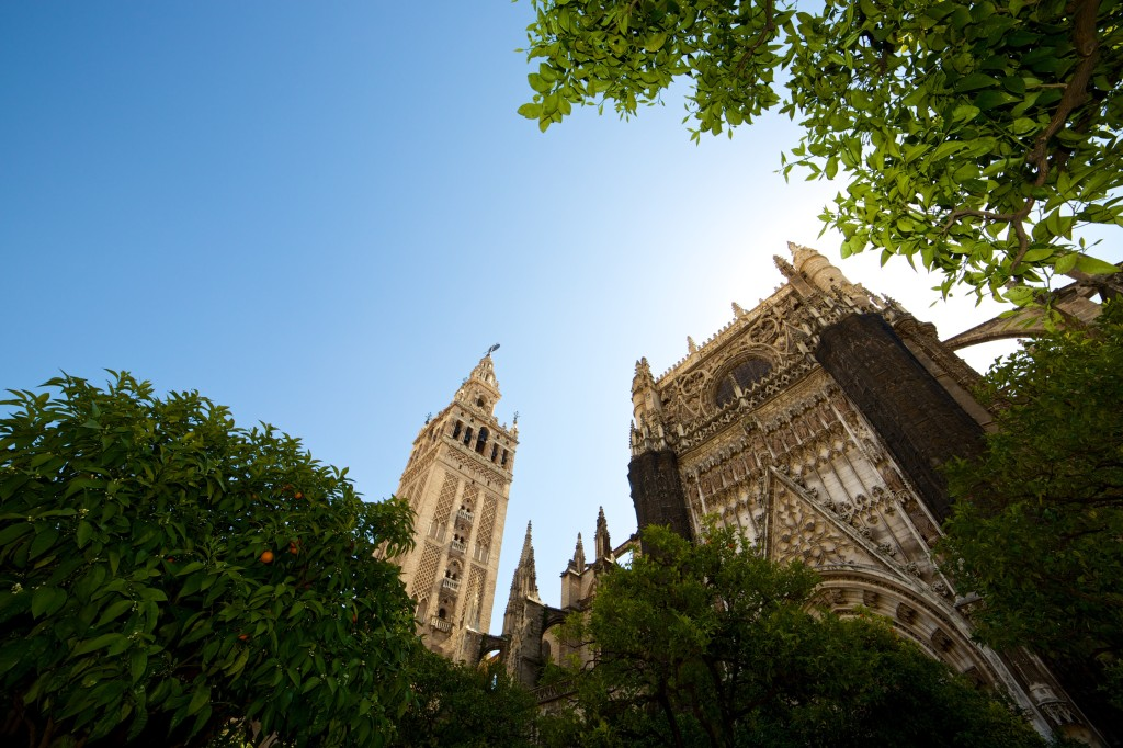 A view of the Seville Cathedral tower from far below, orange trees in the foreground reminding you that you're in Andalusia.
